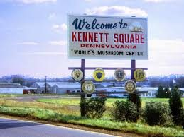 Kennett Square Pennsylvania Lawyers